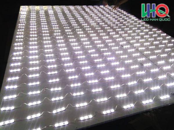 LED-han-Quoc-mau-trang