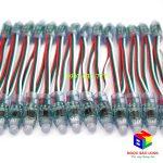 Cung cấp led dây full color 1903 giá rẻ tại TPHCM