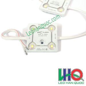 LED module 4 bóng Hàn Quốc NC LED
