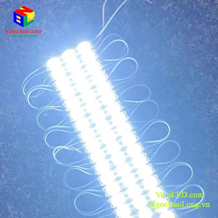 LED-hat-3-bong-anh-sang-trang
